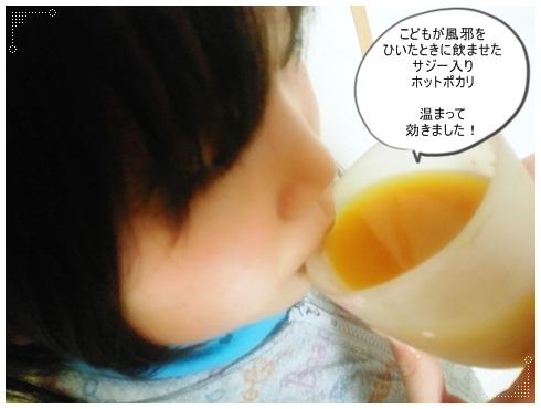 フィネスサジー【ホットポカリわかな】480×360.JPG
